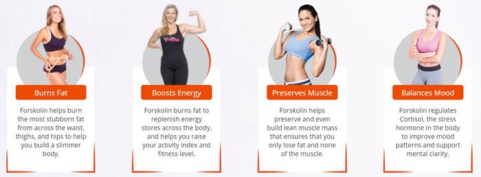 Green Force Forskolin benefits